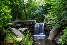 Central Park Secrets