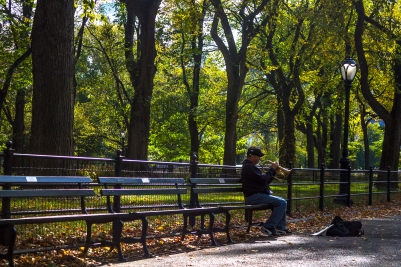 Central Park Musician