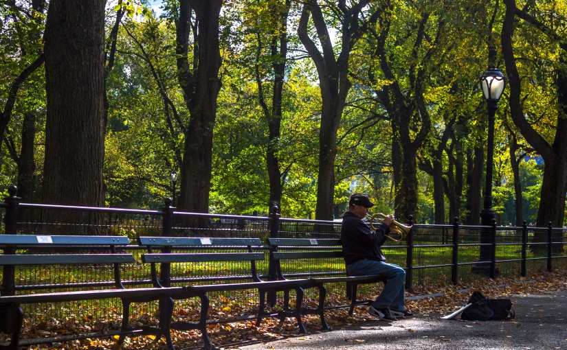 Central Park Musician