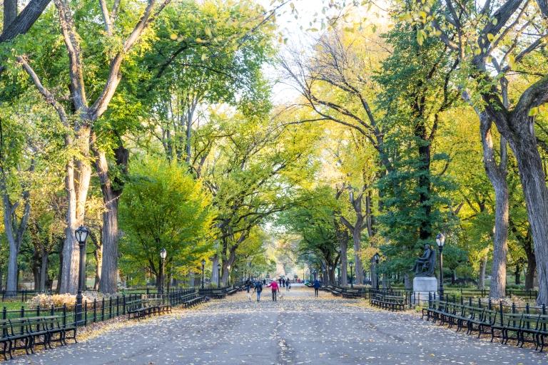 Central-Park-Fall-6