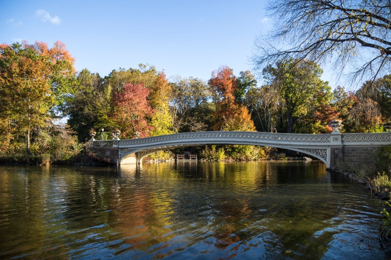 Central-Park-Fall-7