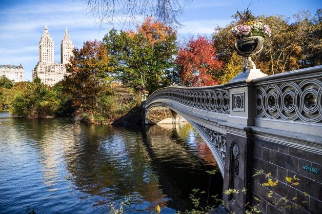 Central-Park-Fall-8a